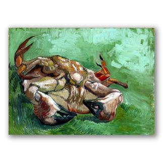 Un Cangrejo de Espaldas